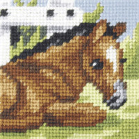 My First Embroiodery Needlepoint Kit In the Field by Orchidea