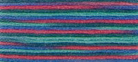 4507  - DMC Coloris Stranded Thread Art 517
