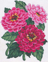 Pink Crysanthemums Canvas only By Grafitec