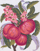 Apples and Blossom Canvas only By Grafitec