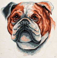 Bulldog Canvas only By Grafitec