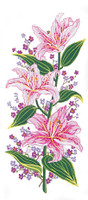 Pink Lillies Canvas only By Grafitec