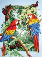 Tropical Parrots Canvas only By Grafitec