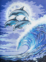 Moonlight Dolphins Canvas only By Grafitec