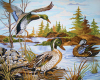 Mallards Canvas only By Grafitec