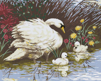 Mother Swan and Signets Canvas only By Grafitec
