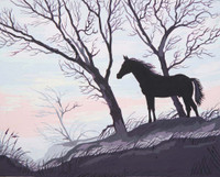 Stallion Silhouette Canvas only By Grafitec