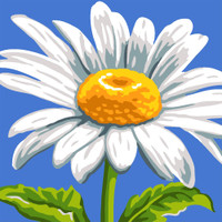 Sunshine Daisy Canvas only By Grafitec