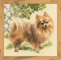 Pomeranian Cross Stitch Kit By Riolis
