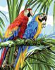 Macaws Canvas By Royal Paris