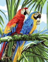 Macaws Canvas By Royal Paris