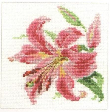 Lily Cross Stitch Kit by Alisa