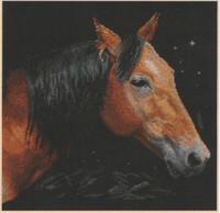 Altair Cross Stitch Kit by Alisa