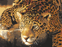 Jaguar Prowl Tapestry Canvas By Grafitec