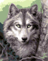 Grey Wolf Tapestry Canvas By Grafitec