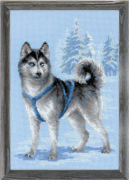 Husky Cross Stitch Kit by Riolis