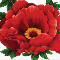 Peony No Count Cross Stitch Kit By Riolis