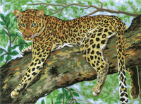 Cheetah  Tapestry Canvas By Collection D'art