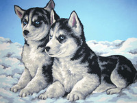 Husky Puppies Tapestry Canvas By Collection D'art