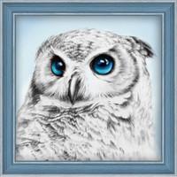 Owl Sight Diamond Painting Kit