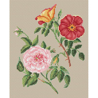 Copper & Virgin Rose Cross Stitch  by Stark