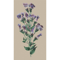 Gentiana Crinita Cross Stitch Kit by Clarissa Badger