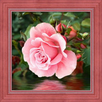 Rose by the water Diamond Painting Kit