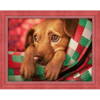 Dachshund Puppy  Diamond Painting Kit