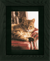 Counted Cross Stitch Kit: Relaxed Tabby (Evenweave) By Lanarte