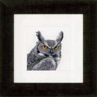 Counted Cross Stitch Kit: Grey Owl By Vervaco