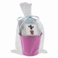 Felt Decoration Kit: Cactus