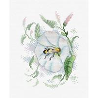 Nectar Freshness Cross Stitch Kit by MP studia