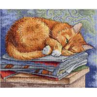 Studying Cat Cross Stitch Kit by MP studia
