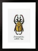 Counted Cross Stitch Kit: Golden Beetle By Vervaco