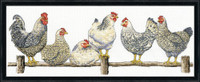 The Roost Cross Stitch By Solocraft