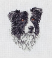 Border Collie Cross Stitch Kit By Anchor