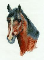 Horse Portrait Cross Stitch Kit