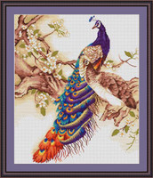 Peacock I Cross Stitch Kit By Luca S
