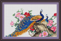 Peacock Ii Cross Stitch Kit By Luca S