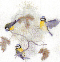 Blue Tits And Seed Heads Cross Stitch Kit