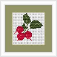 Radishes Mini Cross Stitch Kit By Luca S