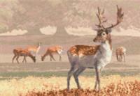 Deer Park Cross Stitch Kit By Heritage