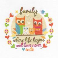 Family  Cross Stitch Kit By Dmc