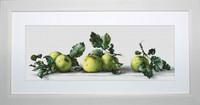 Apples Still Life Cross Stitch Kit By Luca S