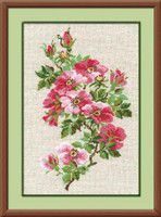 May Wild Rose Cross Stitch Kit