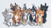 Suzys Zoo - Tails Of Duckport Cross Stitch Kit