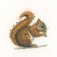 Red Squirrel Cross Stitch Kit For Beginners