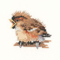 Sparrow Cross Stitch Kit For Beginners