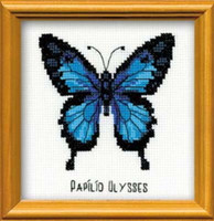 Ulysses Butterfly Cross Stitch Kit By Riolis