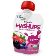 Mixed Berry, 24 of  3.17 OZ, Plum Kids